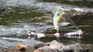 Bootjesrace Camping de la Semois 26 juli 2015