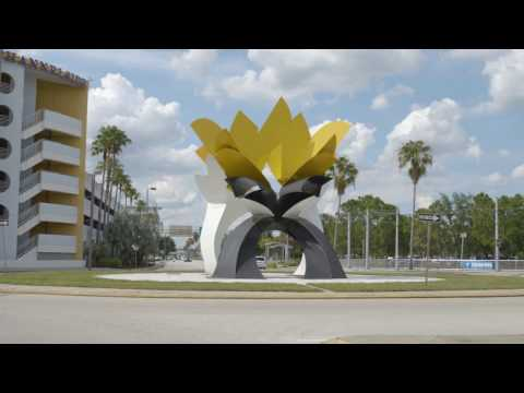 City Life in Tampa | The Art Institute of Tampa