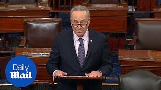 Chuck Schumer says Trump's nominations need more thorough vetting - Daily Mail