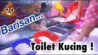 WOW 🐱 TOILET KUCING 🐱 CATS TIME - RUTINITAS AKU & KUCINGKU [ VIDEO KUCING LUCU ]
