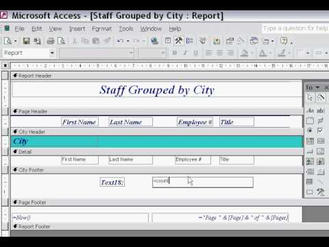 Access - Reports Count Function - YouTube