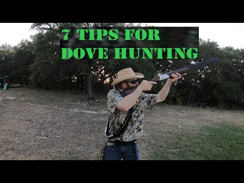 7 TIPS FOR DOVE HUNTING IN TEXAS