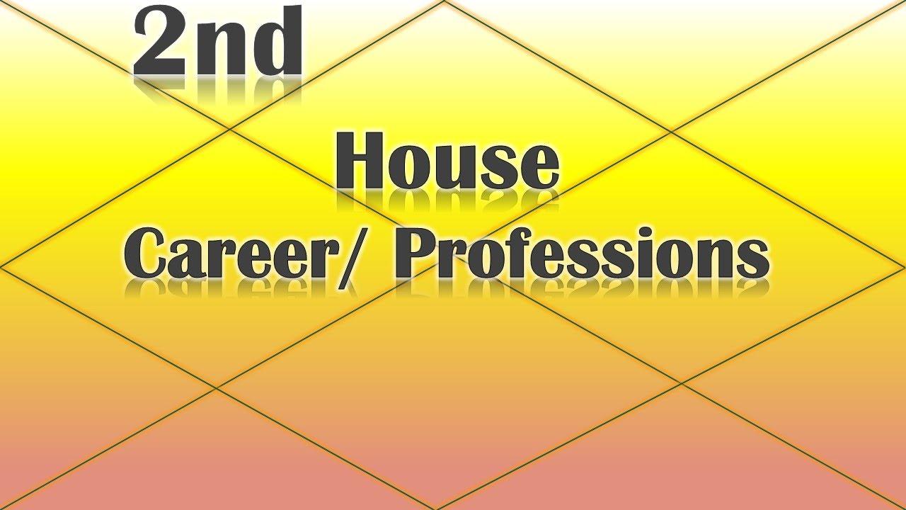 vedic astrology career