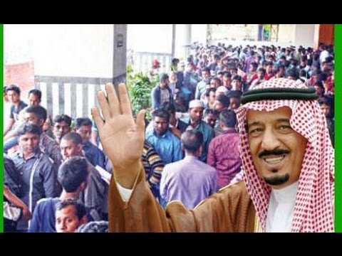For illegal migrant, Saudi Arabian government opportunity
