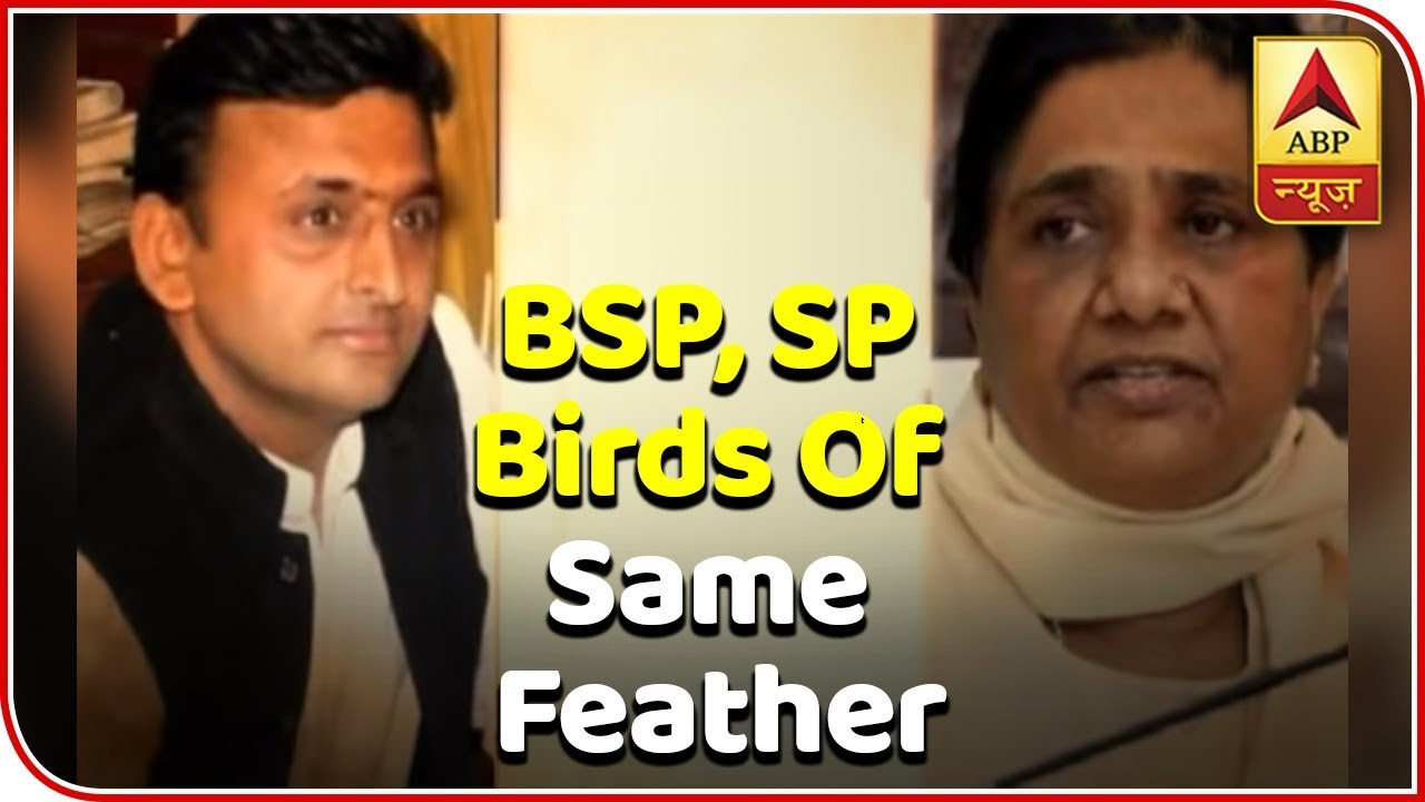 BSP, SP Birds Of Same Feather: BJP | Master Stroke | ABP News