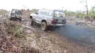 Toyota VX & Toyota HDJ 80