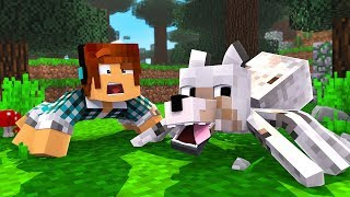ARANHA LOBO !! - [ Vida de Aranha #18 ] - Minecraft