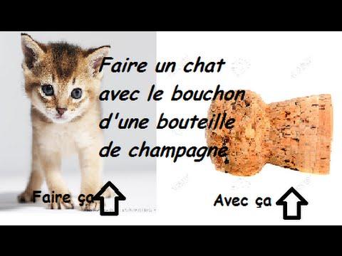Tuto 1 faire un chat avec un bouchon youtube - Que faire avec des bouchons de champagne ...