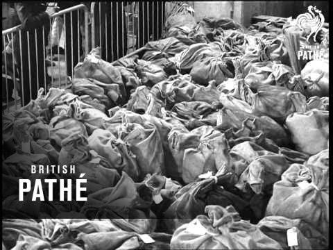 Drug Destruction (1967)