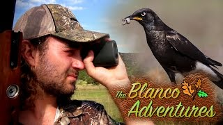 Starling Pest Control with the TDR | The Blanco Adventures - Episode 2