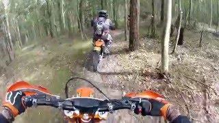 Minmi   Newcastle Trail Riders   KTM.