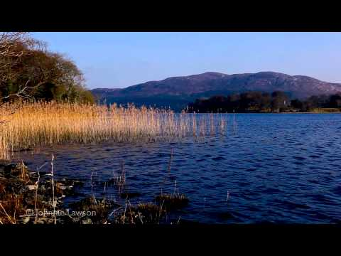 Musica Clasica Relajante-Beethoven-Relaxing Classical Music