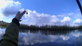 Рибалка електронної приманкою Predator