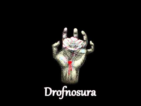 Drofnosura - The Sun, If Dying