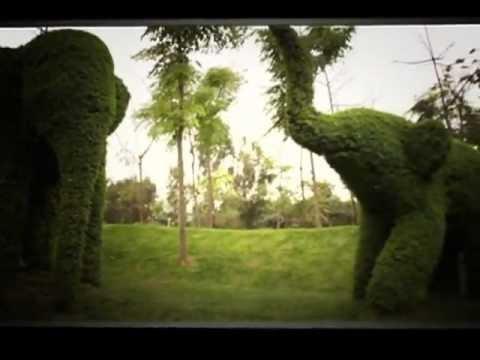 Estatuas de arboles lima ciudad para todos youtube for Arboles y arbustos para jardin