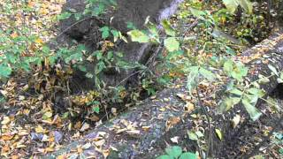 видео Постановление Правительства РФ от 22.12.2011 N 1092 (ред. от 27.06.2017)