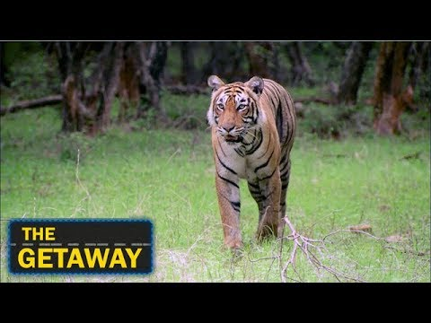 The Getaway - A Visit To The City Of Oranges, Nagpur