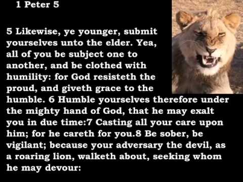 Bible Reading 1 Peter 5