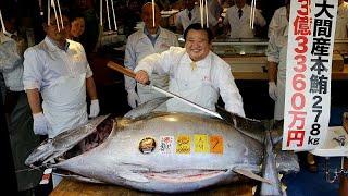 Голубой тунец за три миллиона долларов