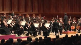 Brahms Symphony No. 4 - 1st Movement
