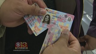 Md. Motor Vehicle Administration Unveils New Driver's Licenses and IDs