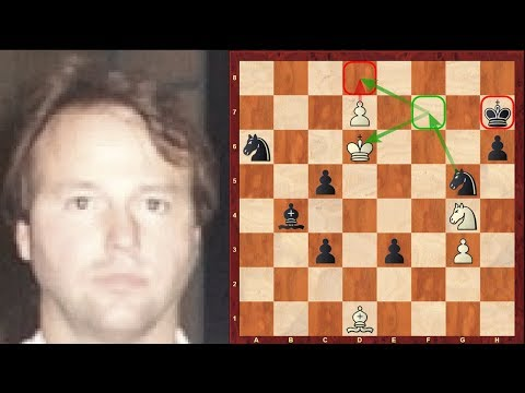 Amazing Immortal Chess Endgame - Jim Plaskett's Puzzle - pro