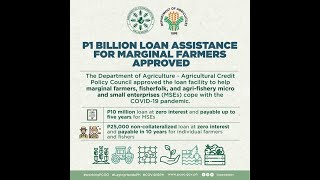 Financial help for the marginal sectors in agriculture and MSE in the Philippines