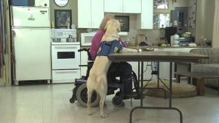 myVancouver PADS (Pacific Assistance Dogs Society)