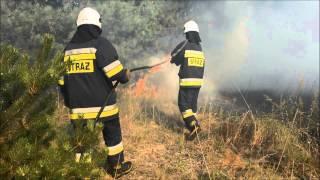 Pożar w lesie w sąsiedztwie gimnazjum