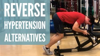 Reverse Hyperextension Alternative Without Machine Using Bench