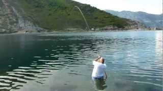 Repeat youtube video Orada-Komarča - Crna Gora 2012