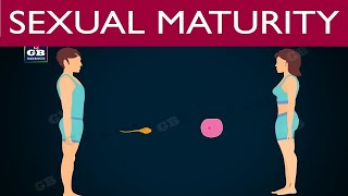 Sexual maturation in human beings #puberty| 10th |biology | ncert class 10 |science |cbse syllabus