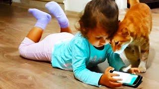 Котик мимими. Новый друг детей. Как назвать кота?