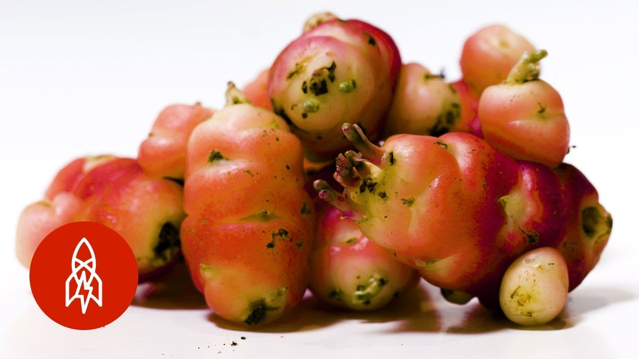 The Most Beautiful Fruits and Vegetables You've Never Seen