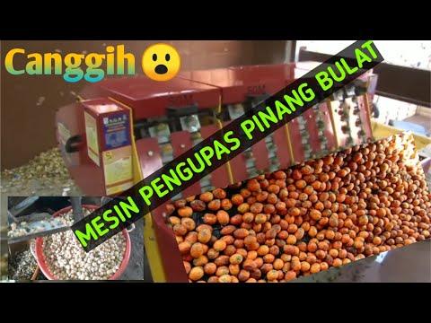 #mesin_pengupas#pinang_bulat MESIN PENGUPAS PINANG BULAT