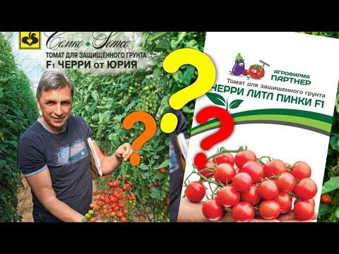 Лучшие томаты черри. Обзор сортов томатов. Семена Партнёр или Семко. Какие лучше?