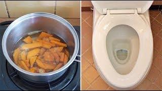 空腹吃下它,排出3公斤黑臭的陳年宿便!排出腸道毒素,讓你無病一身輕!
