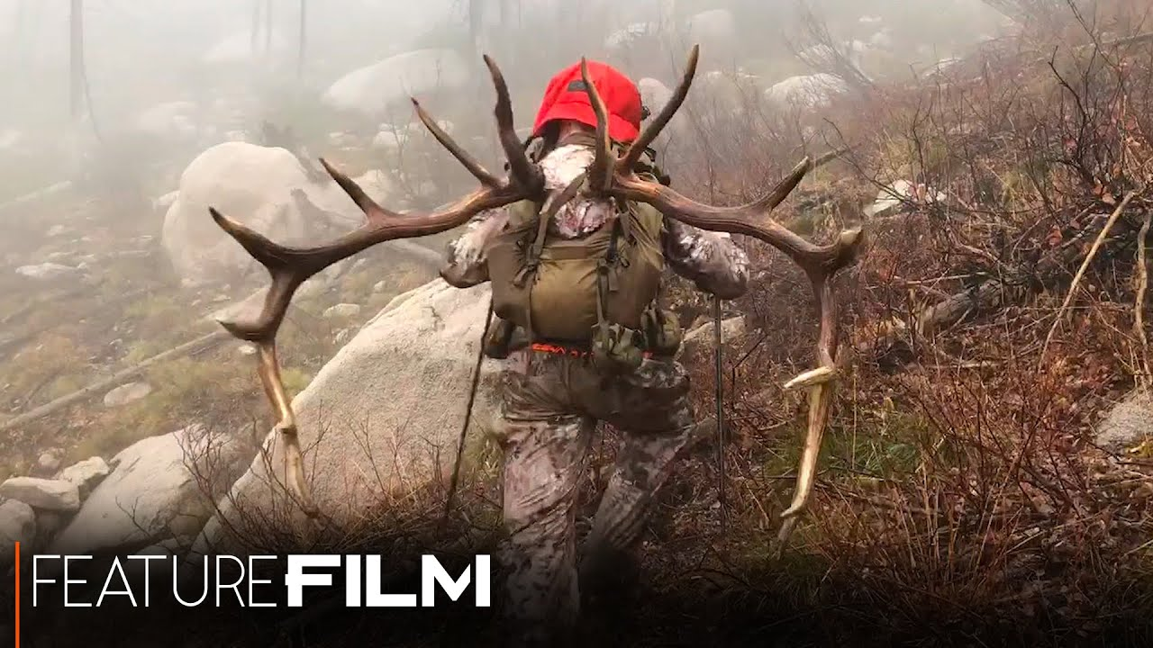 6 5 PRC – What, Why, & Is It Elk Capable? | Muley Freak |