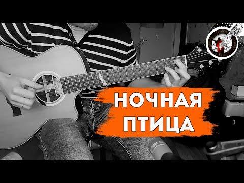 Ночная птица на одной гитаре | К.Никольский / Alex Mercy