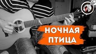 Ночная птица на одной гитаре   К.Никольский / Alex Mercy