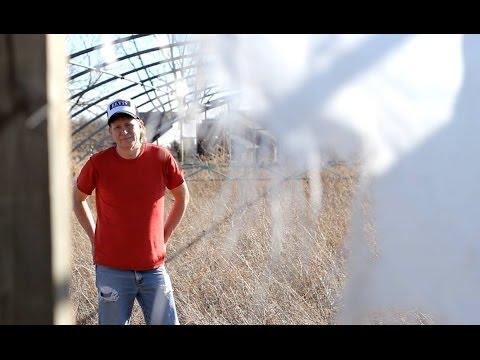 Ned Van Go - Where Ya Gone Virginia? - MUSIC VIDEO