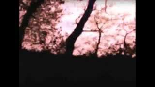 Miasma - HSWO MMXIV (Official Video)