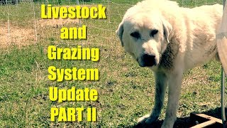 Chickens, Pigs, Sheep, LGD: Livestock and Grazing System Update PART II