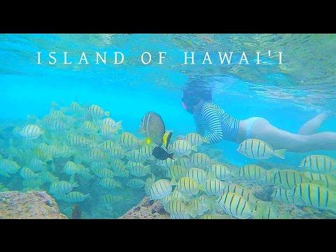 Hawaii Travel Minute Vlog | 夏威夷旅行日志