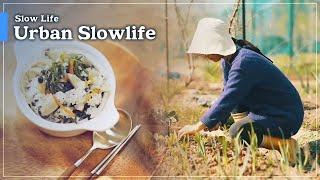 Documentary A  Slow Life - Urban Slowlife  도시 슬로우 라이프