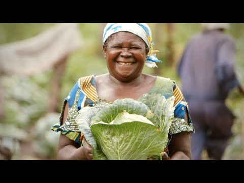 Community Gardens Bring Healing & Health in the Democratic Republic of the Congo