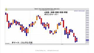 サポーター:成田博之さん 収録内容 ・2本値のバーチャート ・日本で最...