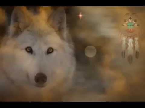 NORMAN - LA MASTURBATIONde YouTube · Durée:  3 minutes 29 secondes