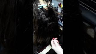 срочно посмотрите как от наращивания портятся волосы