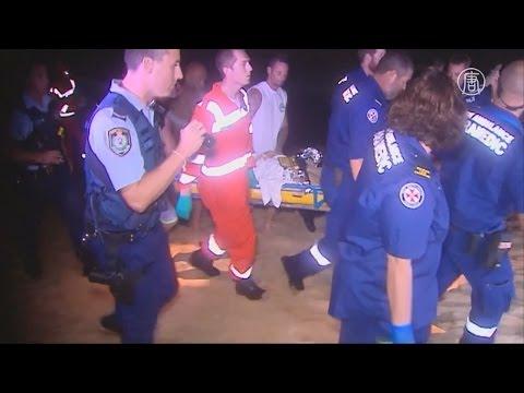 Друзья спасли серфингиста, которому акула откусила ногу (новости)